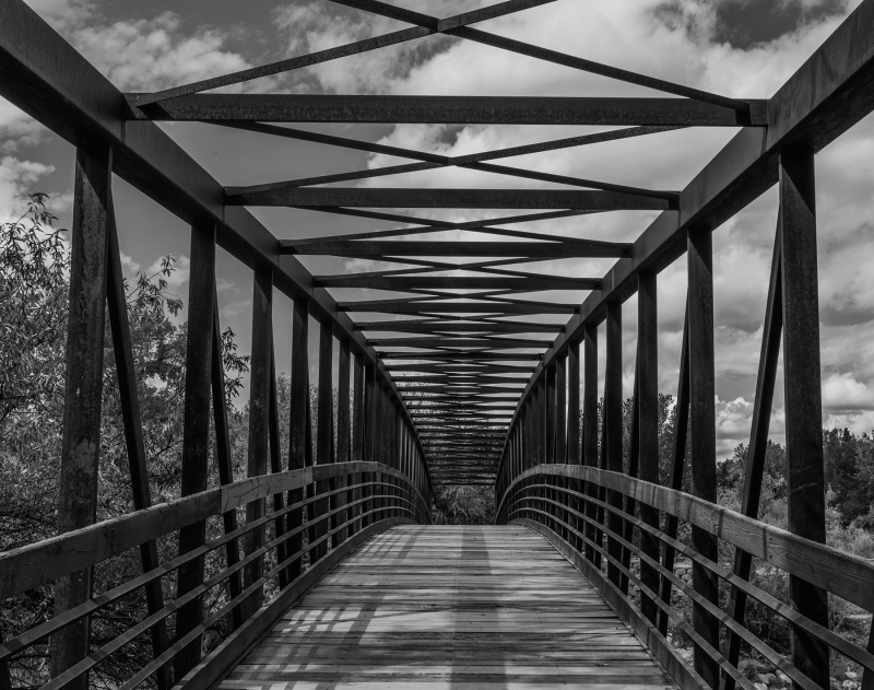 Bridge At Berg Park in B&W
