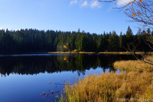 automne, effet miroir
