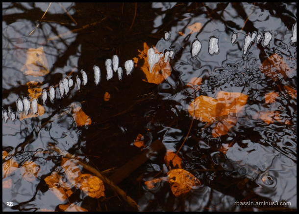 graphisme sur l'eau