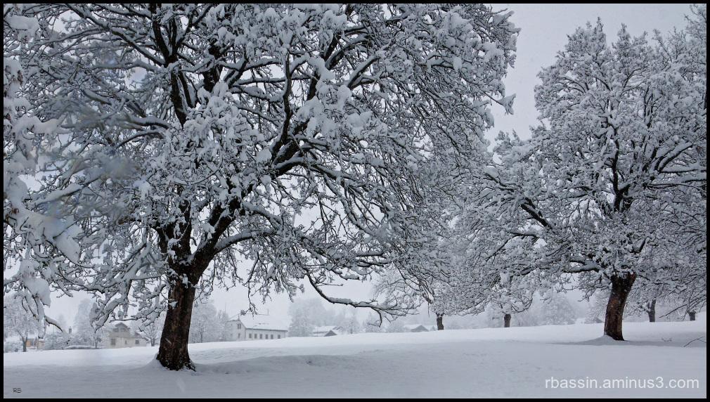 le retour de l'hiver