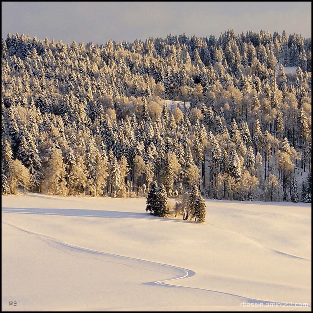 S - le retour de l'hiver