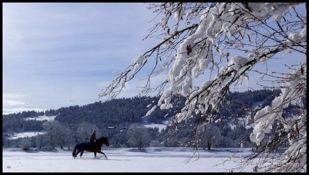 chevauchée - retour de l'hiver