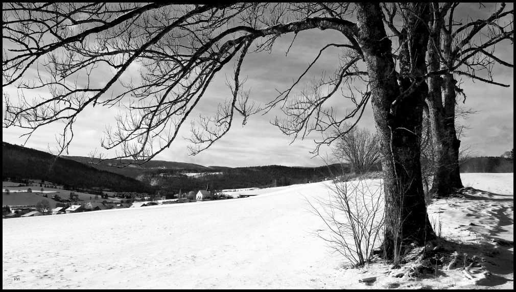 l'hiver # 2