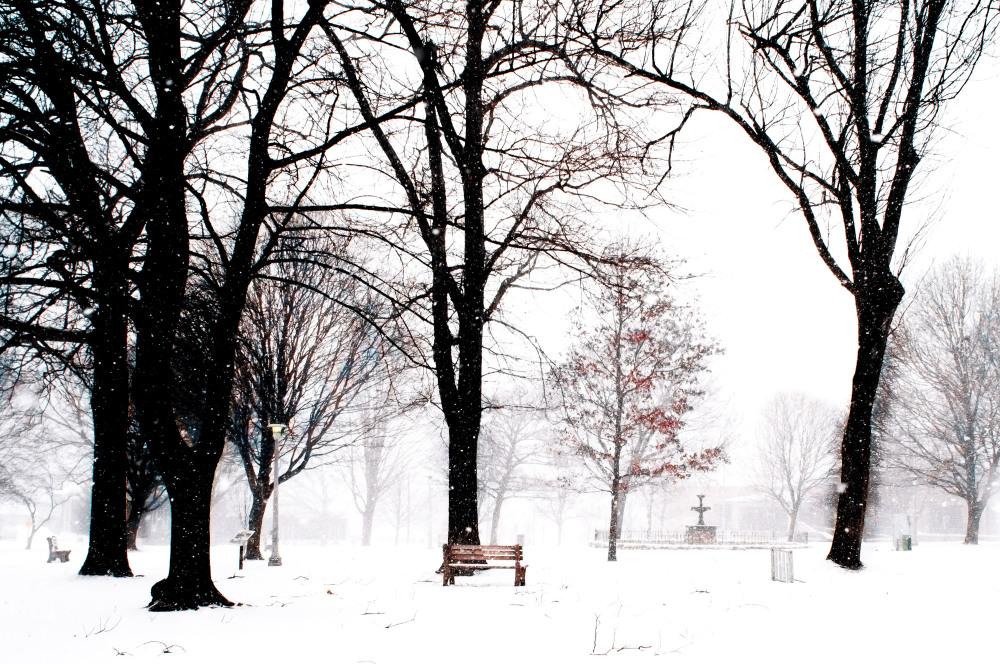 an empty city park in winter