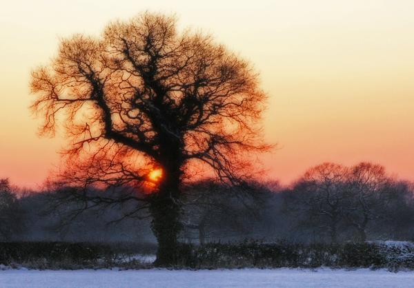 December Twilight