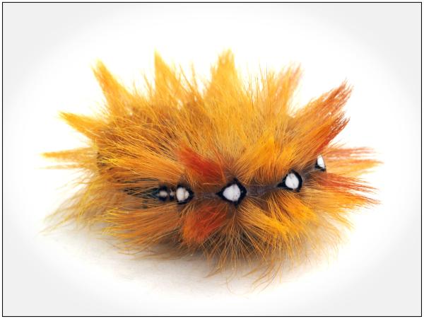 Caterpillar Coil
