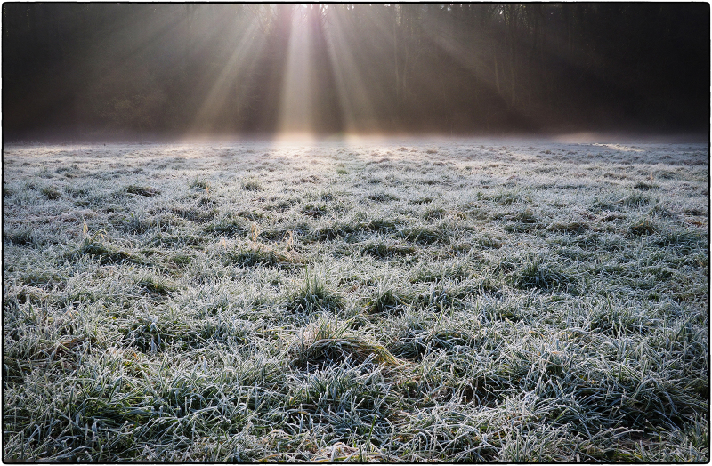 As The Mist Yields To The Sun