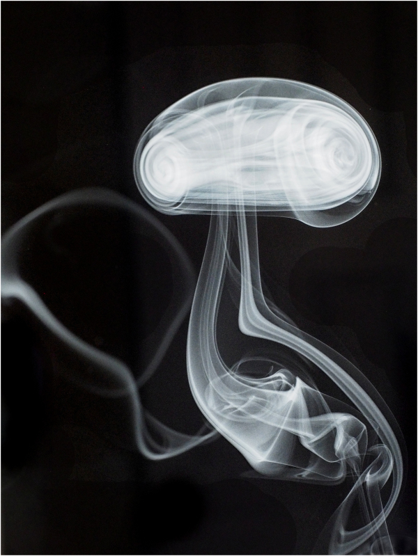 Smoke Mushroom