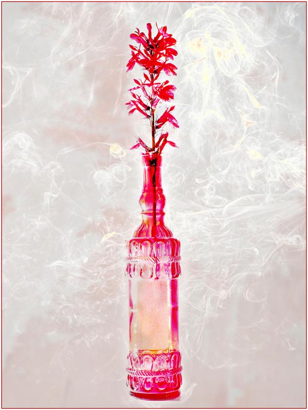 Red Flower in Red Bottle