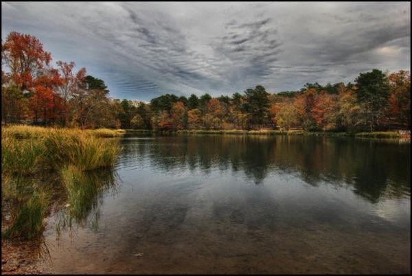Fall at Lake Tyler