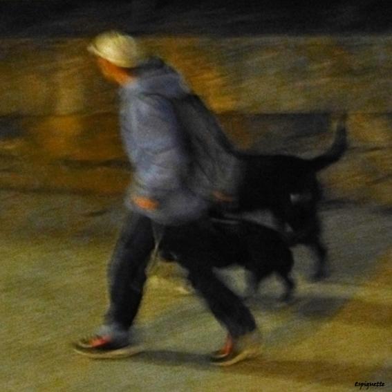 walking through the night
