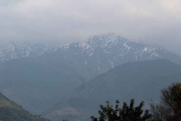 Photo from palampur, himachal pardesh India