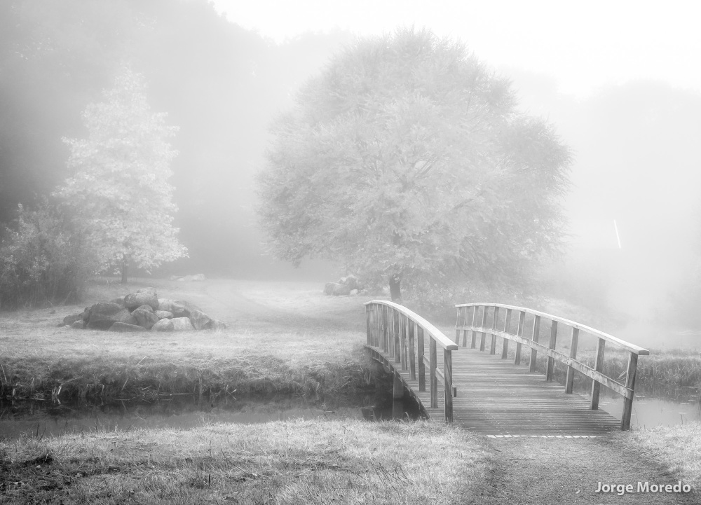 Landscape with bridge in the mist