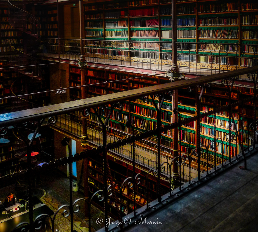 Library of the Rijksmuseum Amsterdam