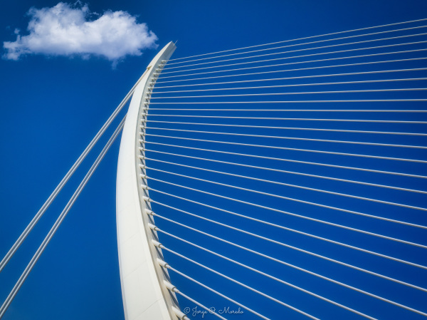 Bridge in Valencia by the architect Calatrava