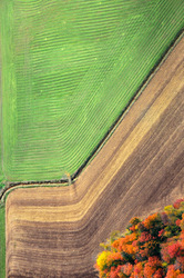 Flying over Muskoka in fall