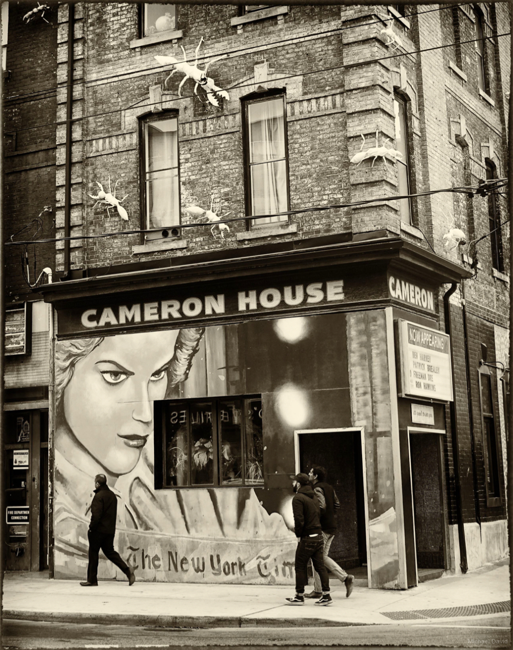 The Cameron House