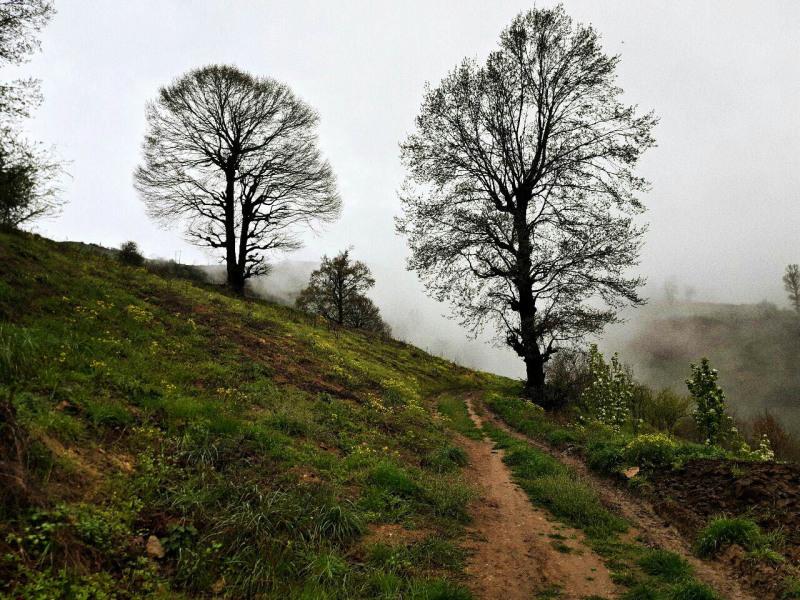 استان گلستان - مینودشت - ارتفاعات روستای ریگ چشمه