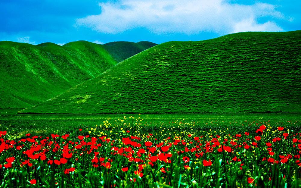 استان گلستان - کلاله - خالد نبی (ع)