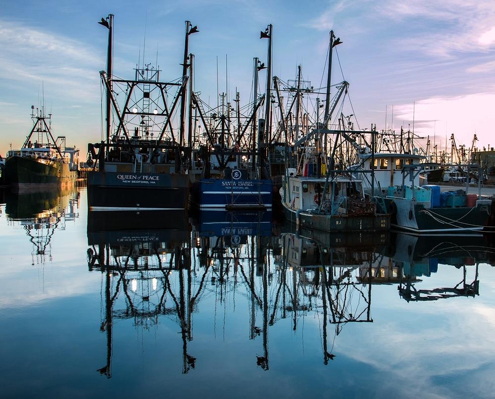 Fish Dock (2)