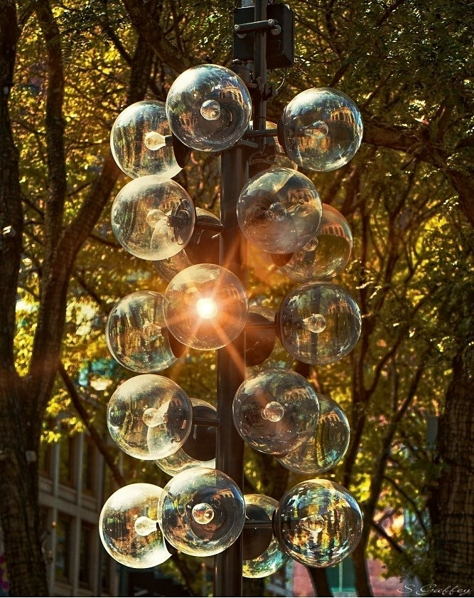 Street Light's