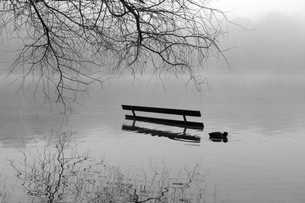un banc à moitié immergé dans un lac