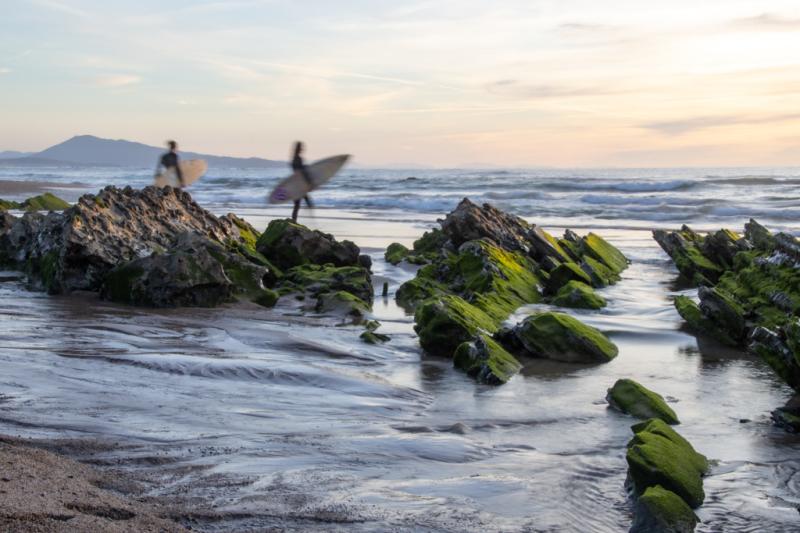 2 surfers vont à l'eau
