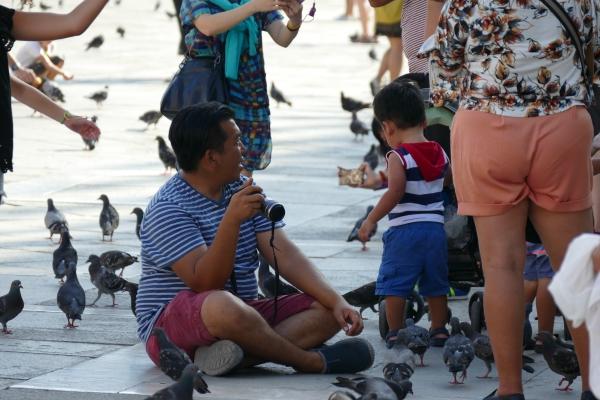 Le pigeon est si proche de l'homme...