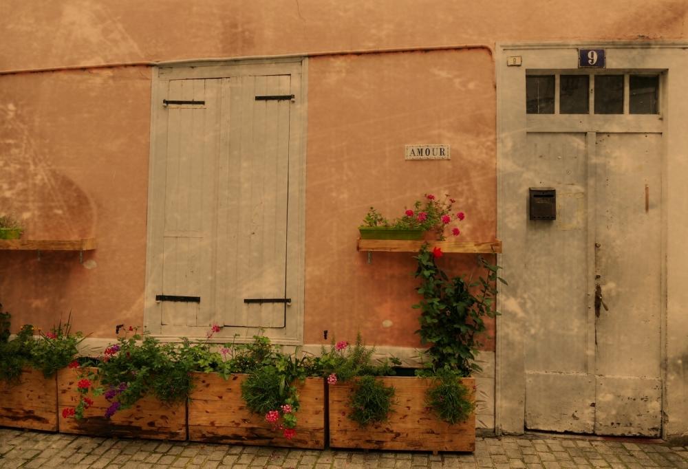 L'amour est un jardin fleuri...