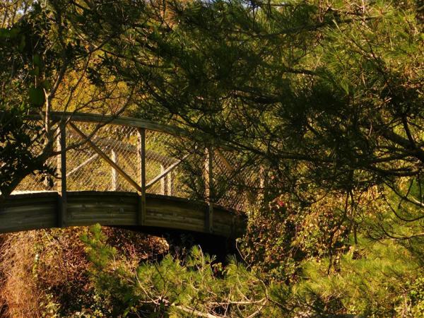 Bridge Over Kind Water