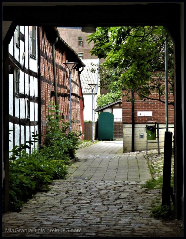 Old & Romantic Alley in Lund City