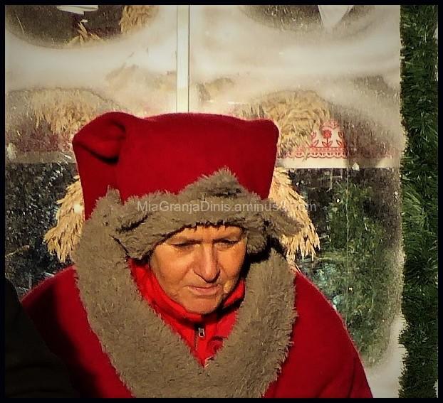 Mrs Santa Claus from Lund -  Sweden