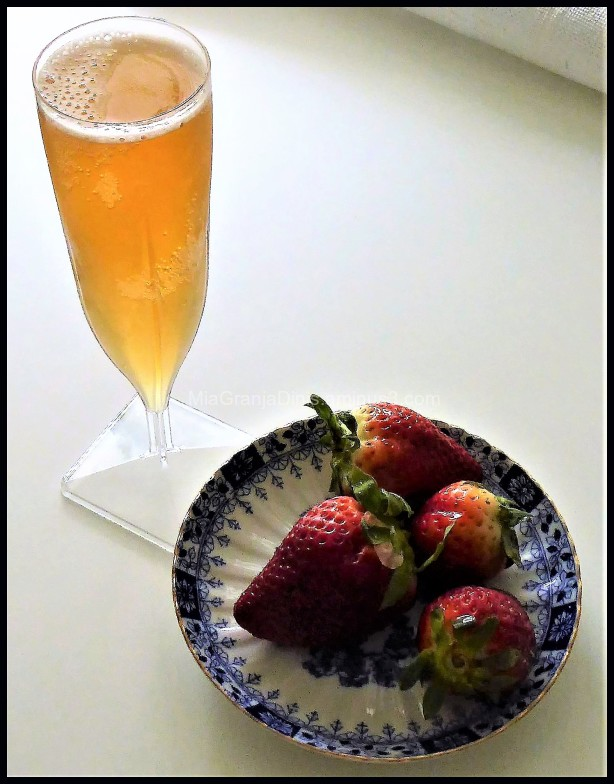 Kombucha & Strawberries