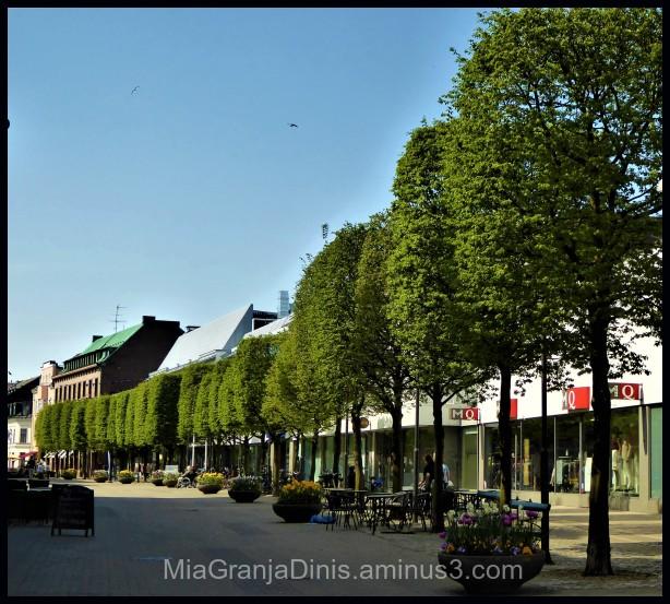 On Walk in Trelleborg City