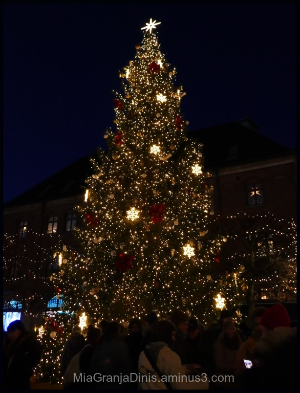 1st Advent in Lund - Sweden
