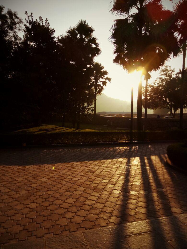 Shine like Sun...