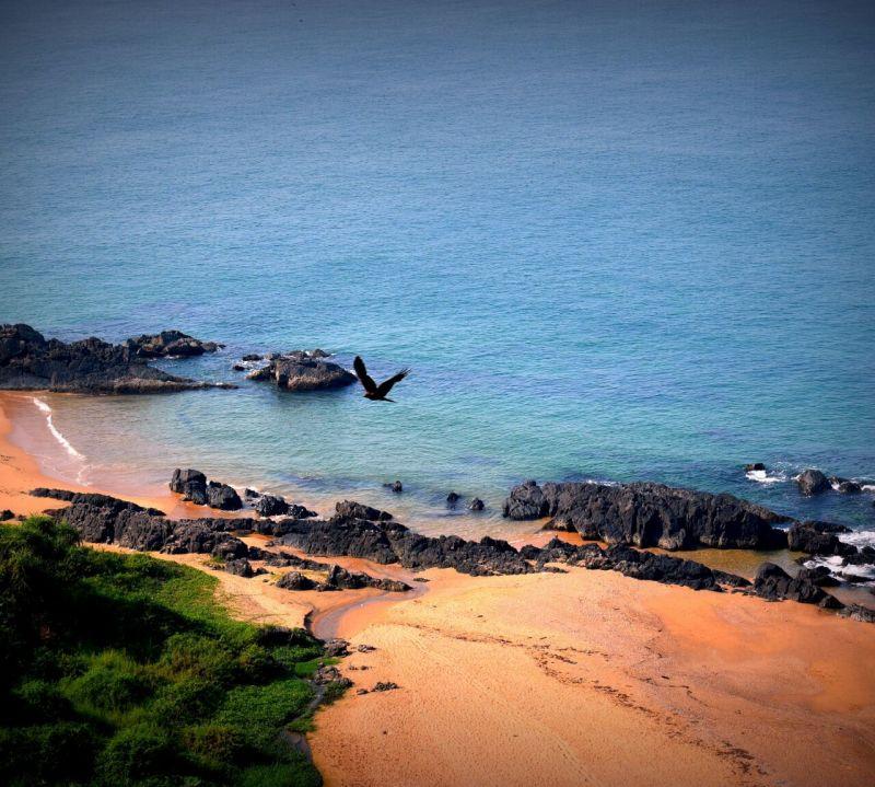 Beaches beauty