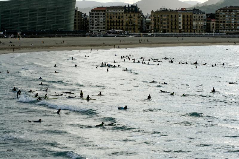 surfistas en la Zurriola