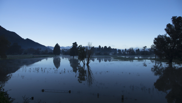 The Waihou Early Morning Floods