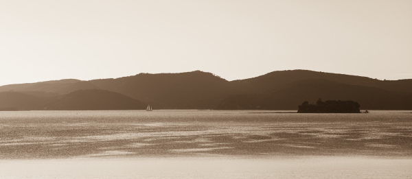 Bay Sepia 2