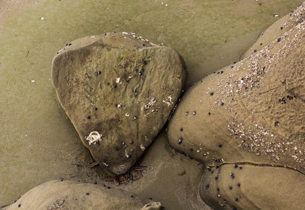 Heart of Stone - beach stories