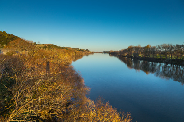 The Waikato River at Mercer