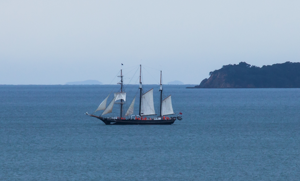 Spirit of New Zealand in the Bay