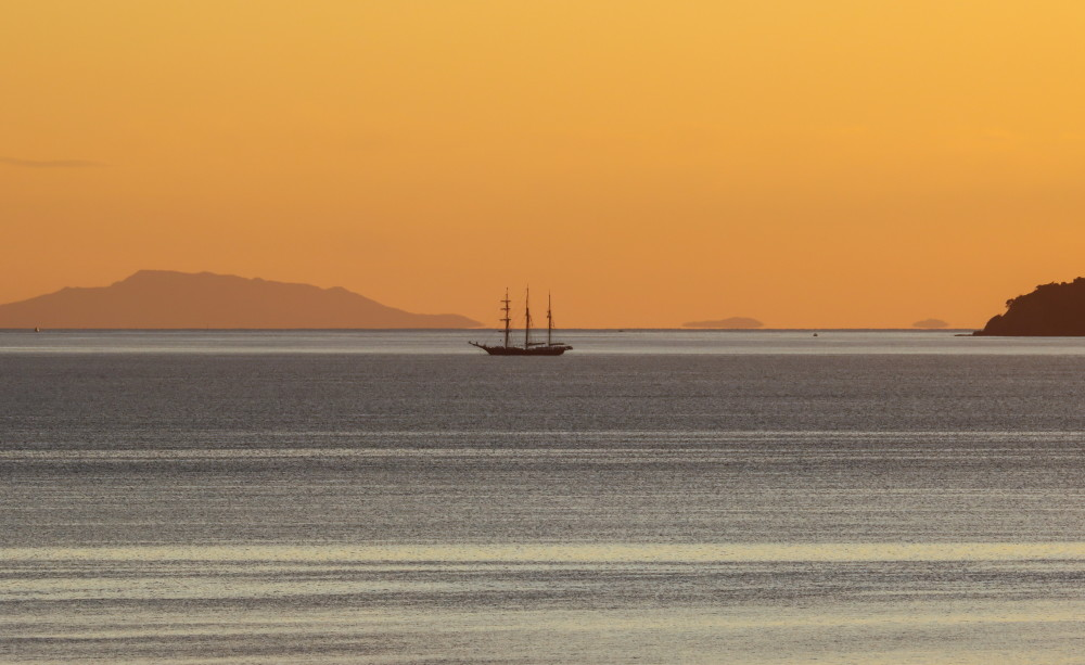 Golden hour in the Bay
