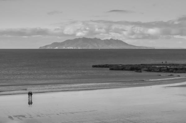 Tawharanui Beach 1