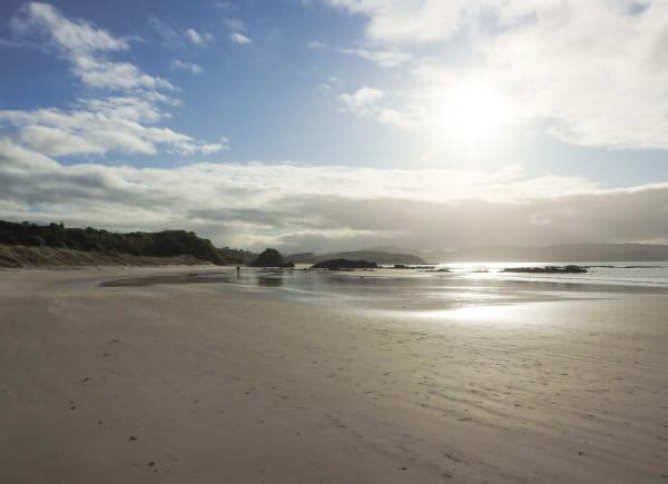 Tawharanui Beach 2