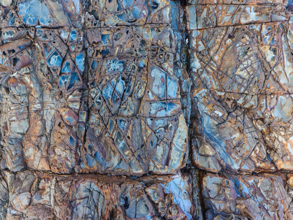 Tawharanui Rocks