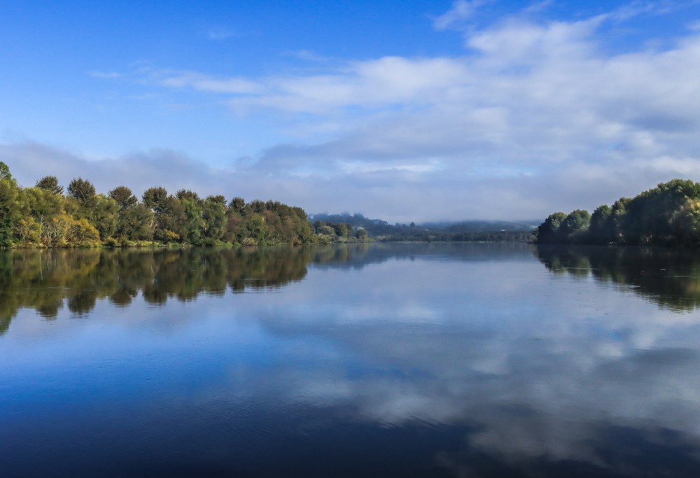 Waikato River at Mercer