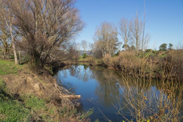 Waihou River at Paeroa
