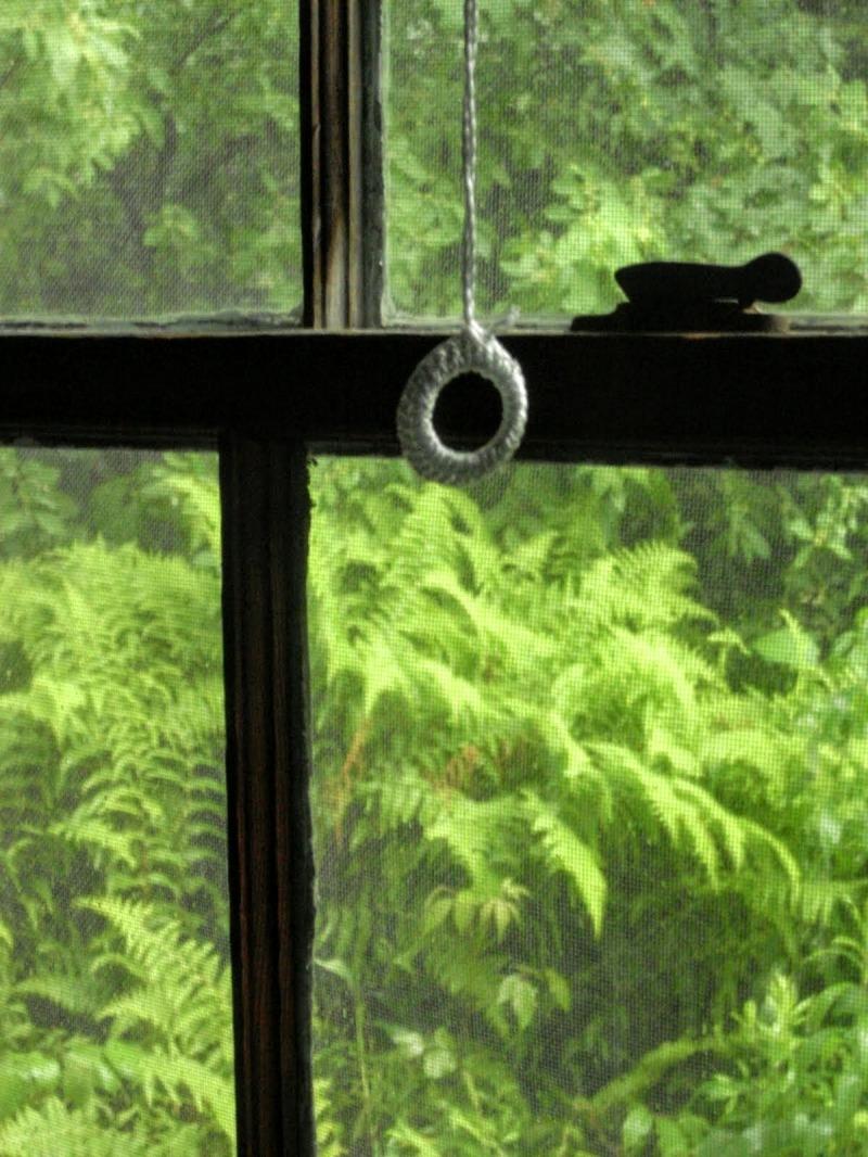 contrast in out dark light green ferns window pane